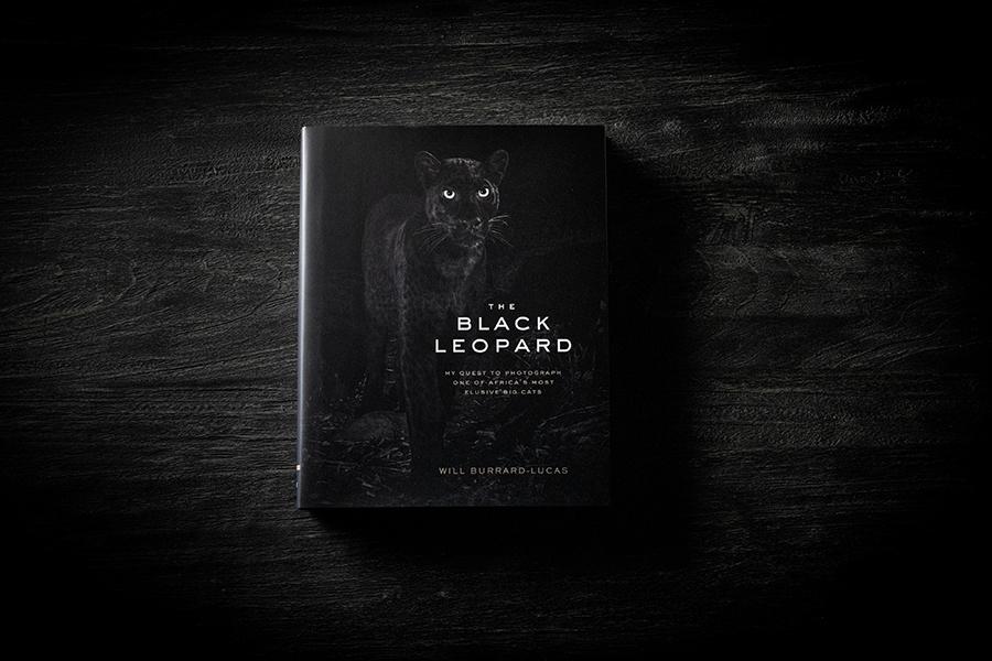 black-leopard-dark.jpg